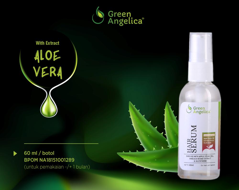 Green angelica hair serum penumbuh rambut kepala alami secara cepat, green angelica serum rambut pencegah kebotakan dan rambut rontok.